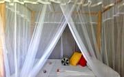 Chalet  -  Chalet  Room
